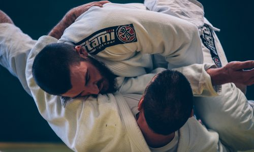 brazilian-jiu-jitsu-2957075_1920